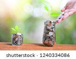 plant coins saving growth up... | Shutterstock . vector #1240334086