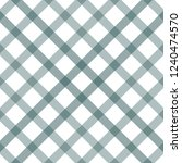 primitive retro gingham... | Shutterstock .eps vector #1240474570