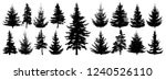 forest trees set. isolated... | Shutterstock .eps vector #1240526110