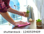 a housewife in a shirt is... | Shutterstock . vector #1240539409