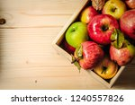 top view of fresh organic... | Shutterstock . vector #1240557826