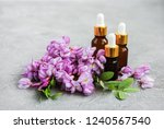 essential oils and pink acacia... | Shutterstock . vector #1240567540