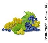 fresh  nutritious  tasty grapes.... | Shutterstock .eps vector #1240620103