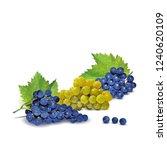 fresh  nutritious  tasty grapes.... | Shutterstock .eps vector #1240620109