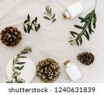 minimal nature concept  pine... | Shutterstock . vector #1240631839