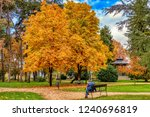 solitary man sits on public...   Shutterstock . vector #1240696819