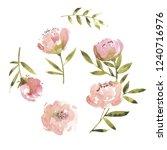 flowers watercolor vector... | Shutterstock .eps vector #1240716976