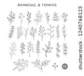 set of branches. hand drawn... | Shutterstock .eps vector #1240768123