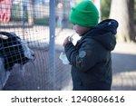 angers  maine et loire  france  ... | Shutterstock . vector #1240806616