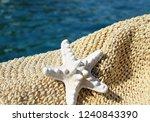 white sea star | Shutterstock . vector #1240843390
