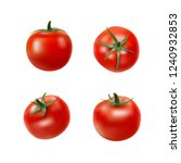 tomato collection. photo... | Shutterstock .eps vector #1240932853