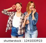 two beautiful smiling hipster... | Shutterstock . vector #1241033923