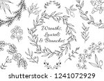 hand drawn botanical branches ...   Shutterstock .eps vector #1241072929
