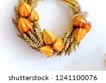 autumn composition with dry... | Shutterstock . vector #1241100076