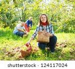 happy  family picks apples in... | Shutterstock . vector #124117024
