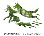 Stock photo three running dogs in a forest three stylized dog silhouettes on on blurred green forest photo 1241242420