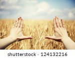 hand's frame over the wheat... | Shutterstock . vector #124132216
