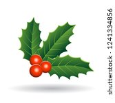 vector illustration of holly... | Shutterstock .eps vector #1241334856