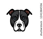 american pitbull terrier dog  ... | Shutterstock .eps vector #1241384536