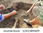 Archaeological Excavations. ...