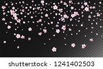 Stock vector nice sakura blossom isolated vector feminine flying d petals wedding border japanese beauty spa 1241402503