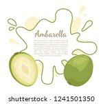 ambarella exotic juicy fruit... | Shutterstock .eps vector #1241501350