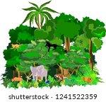 jungle vector scene background  ... | Shutterstock .eps vector #1241522359