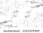 abstract monochrome background. ... | Shutterstock . vector #1241529349