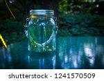 fireflies in a jar | Shutterstock . vector #1241570509
