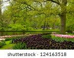 Spring Garden In Keukenhof ...