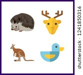 4 wildlife icon. vector... | Shutterstock .eps vector #1241850316