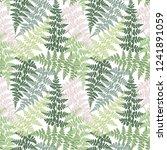 fern frond herbs  tropical... | Shutterstock .eps vector #1241891059