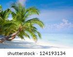 beach on tropical island ... | Shutterstock . vector #124193134