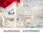 sleeping dog in christmas hat | Shutterstock . vector #1241944603