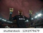 rio de janeiro   brazil... | Shutterstock . vector #1241979679