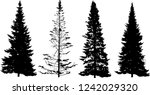 illustration with fir tree... | Shutterstock .eps vector #1242029320