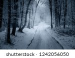 snowy path through forest in... | Shutterstock . vector #1242056050