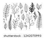 hand drawn vector illustrations.... | Shutterstock .eps vector #1242070993