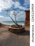 solitary tree in the cala sa...   Shutterstock . vector #1242124909