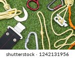 on the grass the concept of... | Shutterstock . vector #1242131956