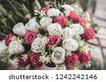 bouquet of red and white... | Shutterstock . vector #1242242146