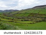Typical Irish Green Landscape...