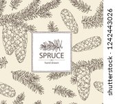 background with spruce  branch... | Shutterstock .eps vector #1242443026