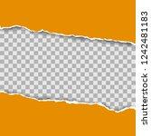 torn paper pieces background... | Shutterstock .eps vector #1242481183