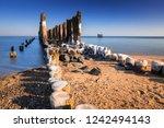 frozen wooden breakwaters line... | Shutterstock . vector #1242494143