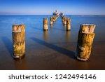 frozen wooden breakwaters line... | Shutterstock . vector #1242494146
