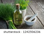 bunch of aromatic fresh green... | Shutterstock . vector #1242506236