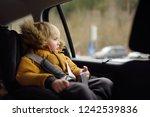 portrait of pretty little boy... | Shutterstock . vector #1242539836