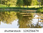 Summer pond landscaping with aquatic plants and water lilies - stock photo