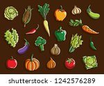 vegetables set collection... | Shutterstock .eps vector #1242576289
